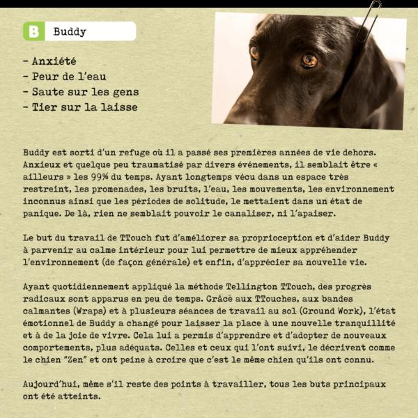 Buddy FR