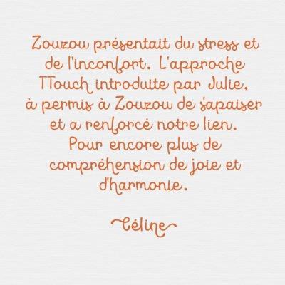 Feedback Celine FR
